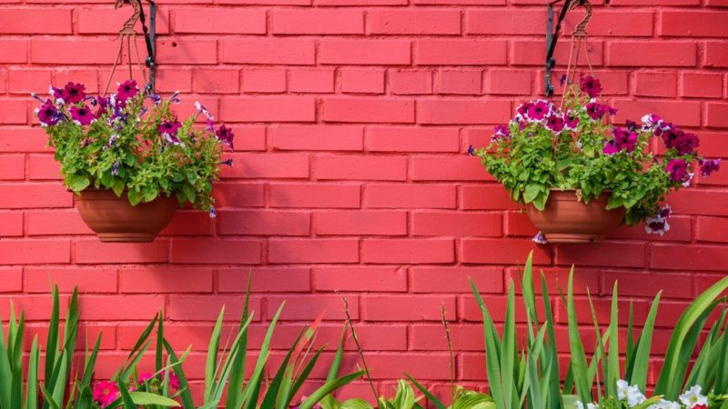 Some Of The Most Innovative Ways For Garden Wall Decorations