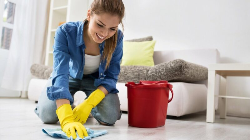 Basic Guide to Different Types of Household Cleaners