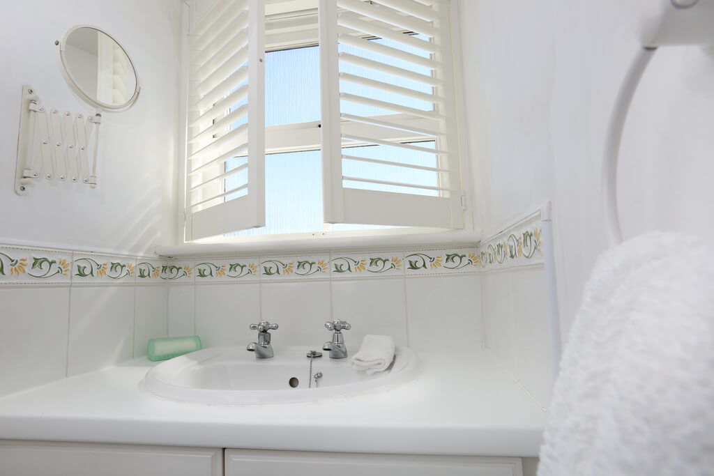 Prevent Mold in a Bathroom