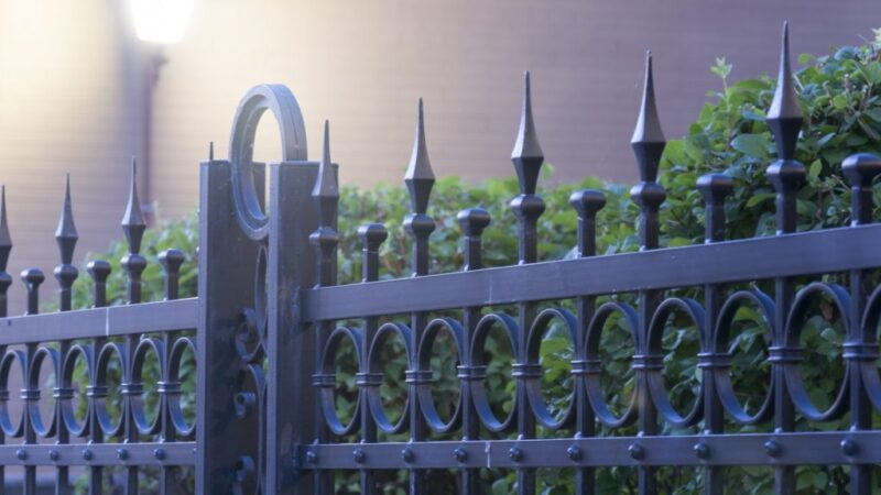 Inspiring Privacy Fence Ideas For Your Backyard
