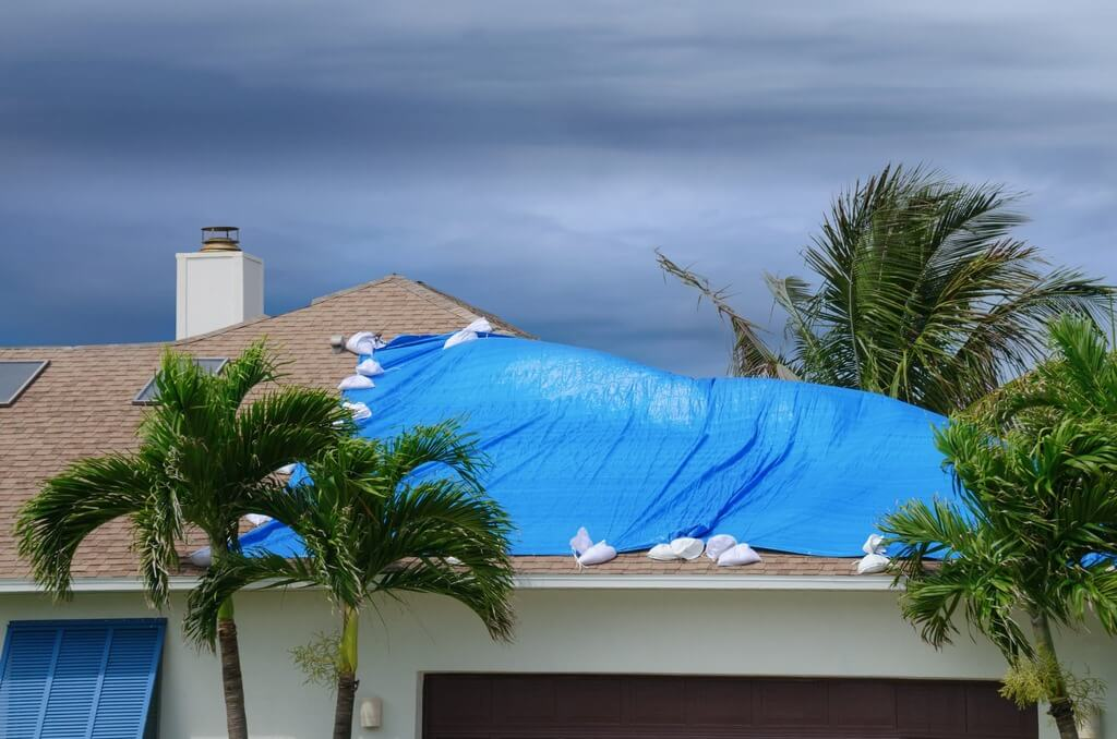 The Things You Should Do with Leaky Apartment Roofs